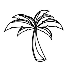 White background with monochrome palm tree vector
