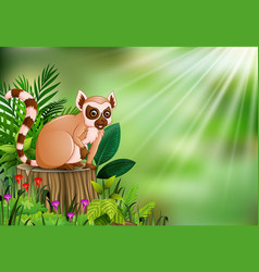 cartoon of lemur sitting on tree stump with green vector image