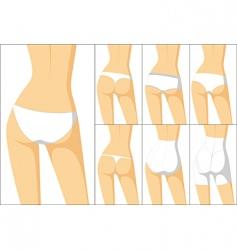 female panties vector image vector image