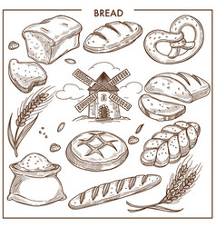 Fresh aromatic wheat and rye bread loaves bun vector