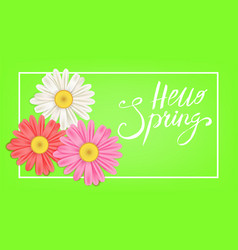 Hello spring banner hand drawn lettering vector