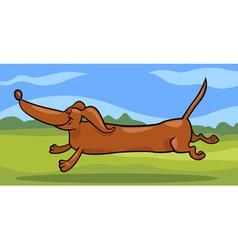 running dachshund dog cartoon vector image