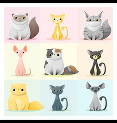 Set of cat family 2 vector