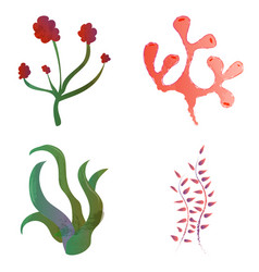 Set of watercolor seaweed and corals isolated on vector