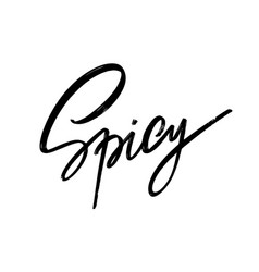 spicy hand drawn lettering isolated template vector image