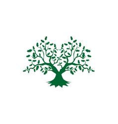 tree root greenoak logo vector image