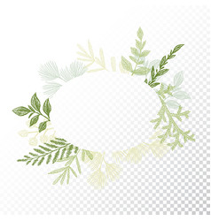 ellipse floral frame leaves decoration vector image vector image