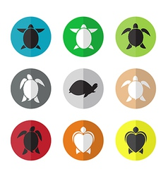 group of turtle in the circle vector image vector image