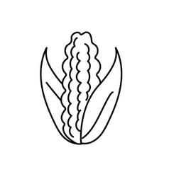 Line delicious and healthy cob corn food vector