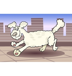 running poodle dog cartoon vector image vector image