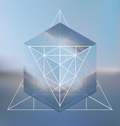 Abstract isometric cube with the reflection of the vector