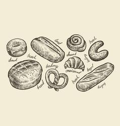 Bread bakery sketch fresh pastry food set of vector