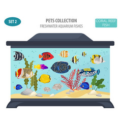 Freshwater aquarium fish breeds icon set flat vector