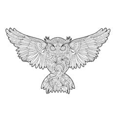 Owl coloring book for adults vector image