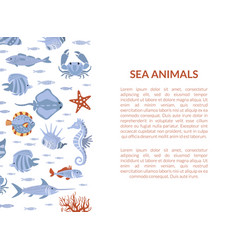 sea animals banner template with marine vector image