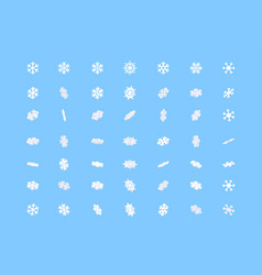 set winter snowflakes in different position vector image