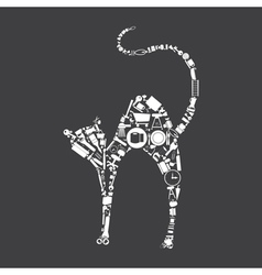 House a cat vector image