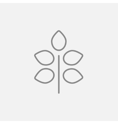 Branch with leaves line icon vector image