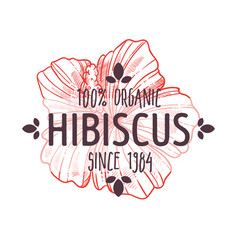 Organic herb hibiscus plant or herb isolated vector