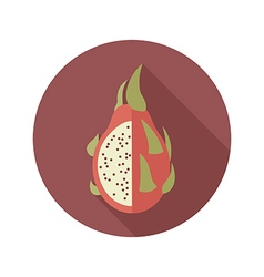 Pitaya flat icon Tropical dragon fruit vector image