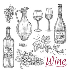 sketch wine elements - bottles glasses vector image