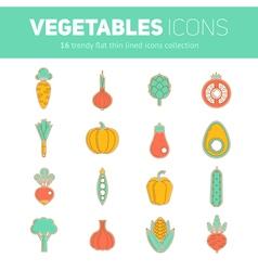 Trendy set of stylish thin line flat vegetable ico vector image