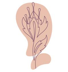 flower line art minimalist botany flora vector image