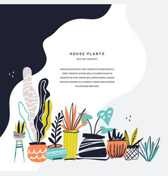 houseplants hand drawn color vector image