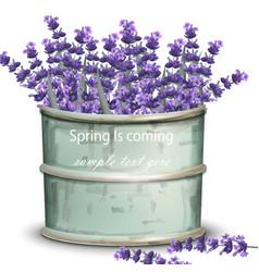 Lavender big bouquet vintage realistic vector