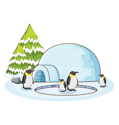 Penguins and igloo on white background vector
