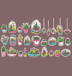 potted cacti and succulent hand drawn stickers set vector image
