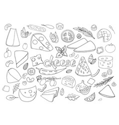 set of hand-drawn outline cheese elements vector image