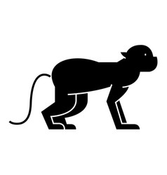 monkey icon sign on isolate vector image