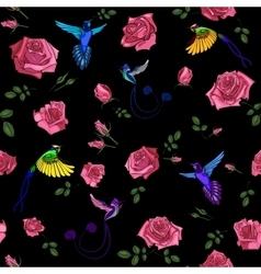 Exotic colibri birds with rose flowers colorful on vector image vector image