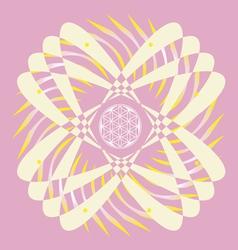 flower of life seed pink mandala vector image vector image