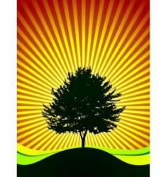 tree on shine background vector image