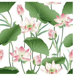 Botanical seamless pattern with pink lotus vector
