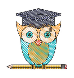 silhouette color section of knowledge owl with vector image