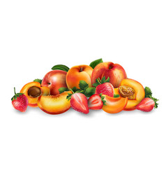 Apricot peach and strawberry vector