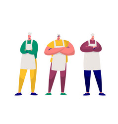 baker chef professional character set kitchen vector image
