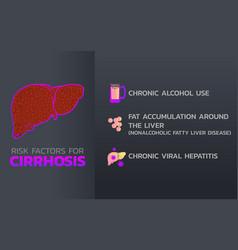 cirrhosis icon design infographic health medical vector image