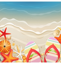 flipflops and shells vector image