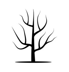 Tree without leaves vector
