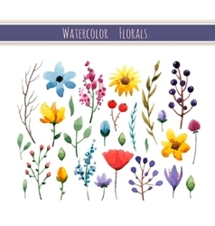 Watercolor floral collection vector