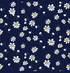 white chamomile flowers seamless blue vector image