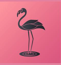 flamingo logo vector image
