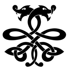celtic dragon vector image
