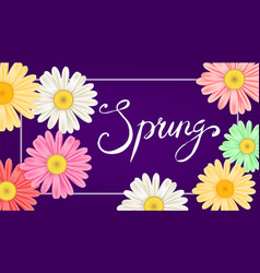 hello spring banner hand drawn lettering vector image