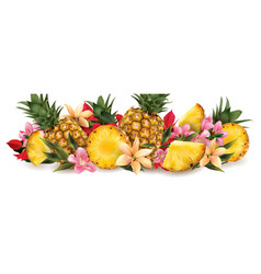 Pineapple and tropical flowers vector