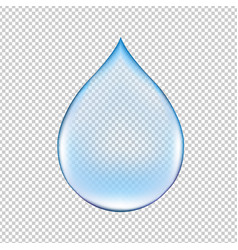 realistic water drop vector image